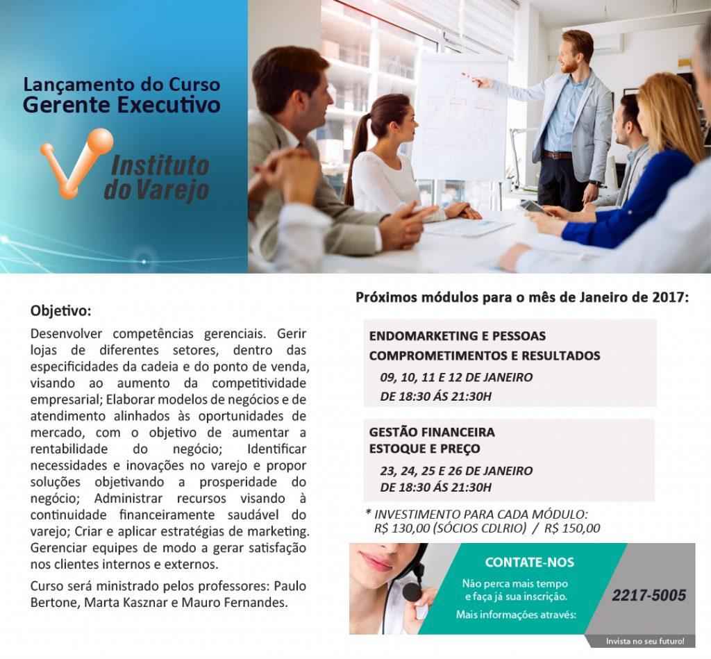 gerente_executivo_modulos